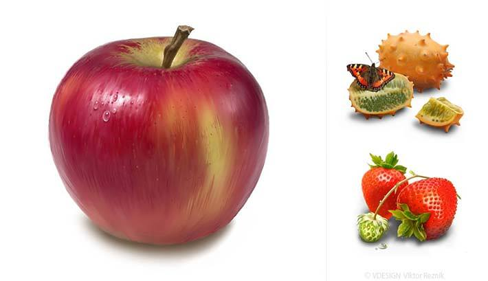 Illustration Apfel | Reitenbach Großhandel
